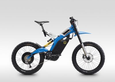 009_Brinco_2015_BL_lateral_dx